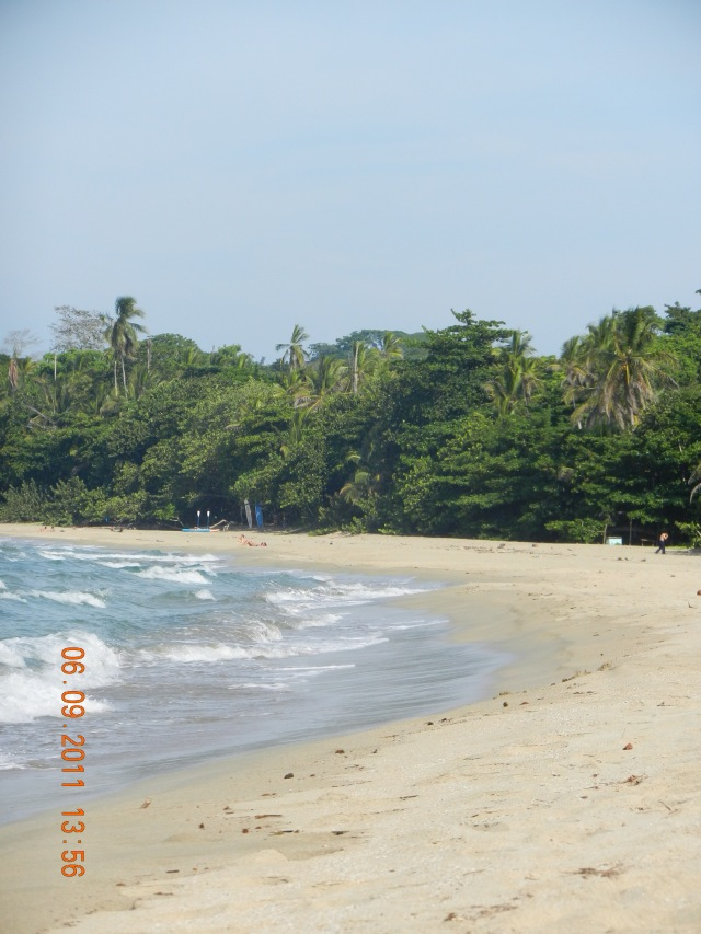 beautiful view of the sandy beach and blue waters of Cocles