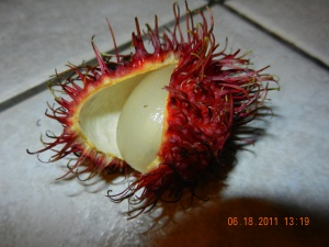 Mamon Chino shell  opened to reveal the fruit inside